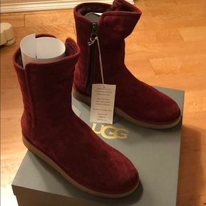 BRAND NEW ABREE SHORT UGGS!! (In box)